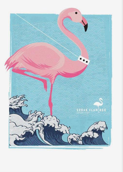 DORIAN R. SPANZELUrban Flamingo